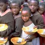 الأمن الغذائي 1