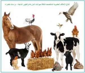 إنتاج الأعلاف العضويه المتخصصه - دراسات خضراء