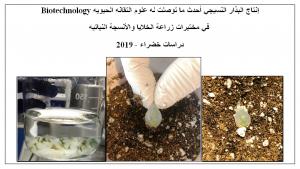 إنتاج البذار النسيجي - دراسات خضراء