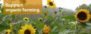 Support organic farming