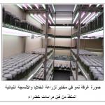 صورة غرفة نمو في مختبر زراعة الأنسجة النباتية المنفذه من قبل دراسات خضراء