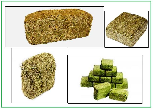 block animal feeds