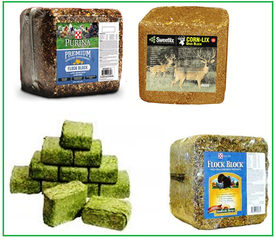 block animal feeds 1