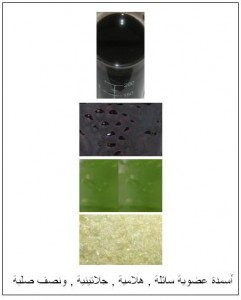 مشاريع إنتاج الأسمدة العضوية الصلبة g3-241x300.jpg