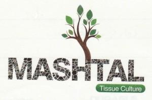 شركة مشتل للزراعات النسيجية - دبي