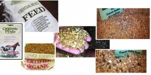 organic animal feeds