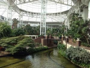 الحدائق الداخليه  indoor garden