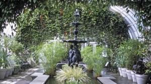 الحدائق الداخليه -  indoor garden