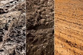 مراحل تحويل الأتربه الغير صالحه للزراعه إلى تربه خصبه