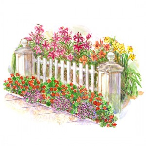 تصاميم المزروعات في مجموعات ضمن الحديقه