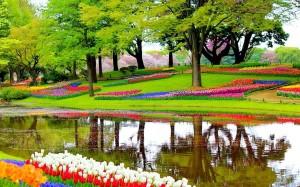 دراسة وتنفيذ الحدائق